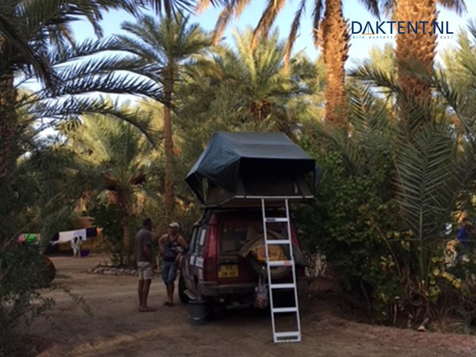 Jazz discovery marokko daktent