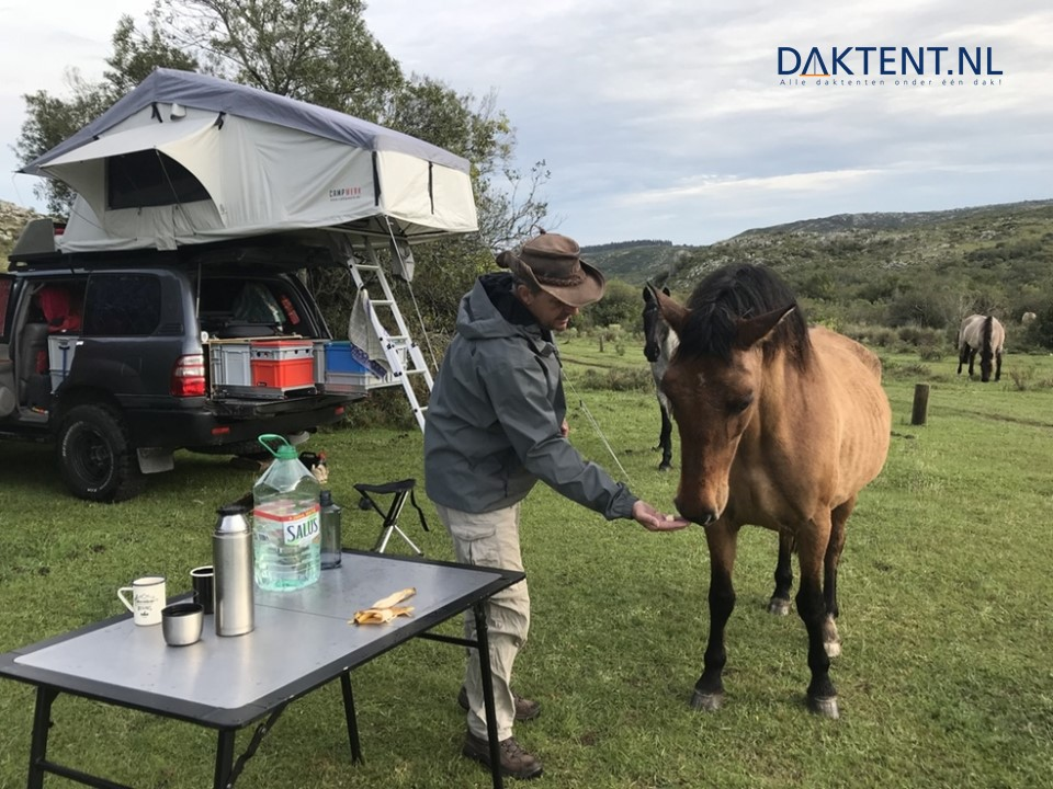 campwerk daktent toyota landcruiser paard